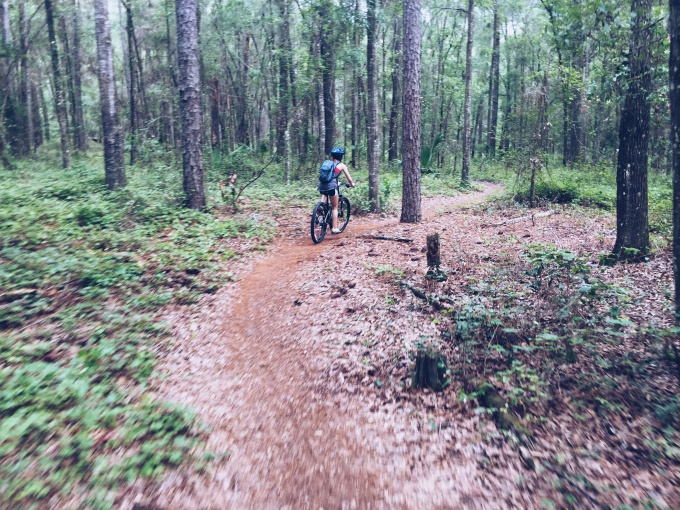 Best Biking Trails in Florida - Mountain Biking at Santos - on LifeFrosting.com