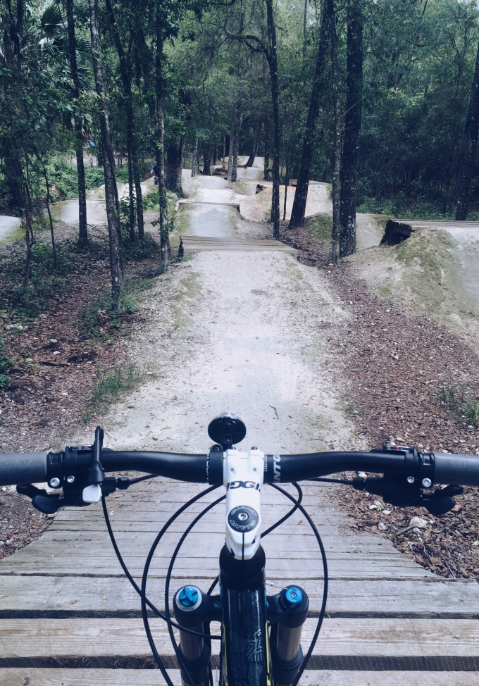 Best mountain biking trails in Florida - Santos biking trail pics on Lifefrosting.com